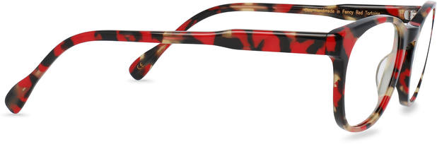 Cleo | Fancy Red Tortoise 3
